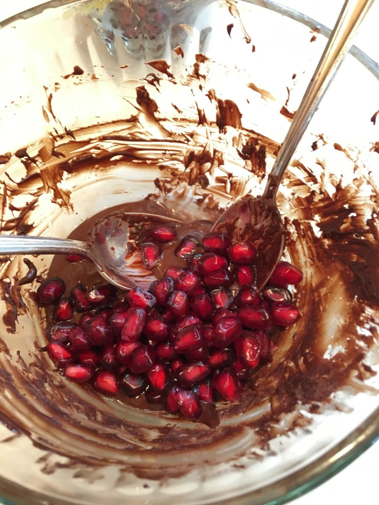chocolate + pomegranate