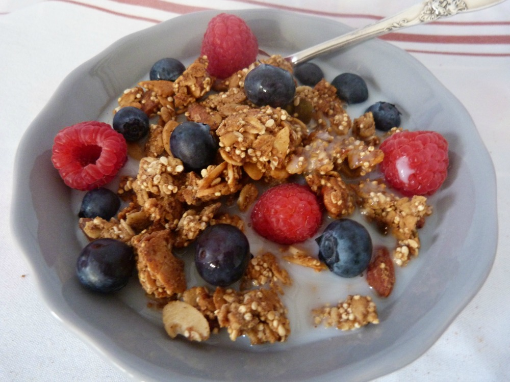 Homemade Apple Cinnamon Granola with berries and Almond Milk
