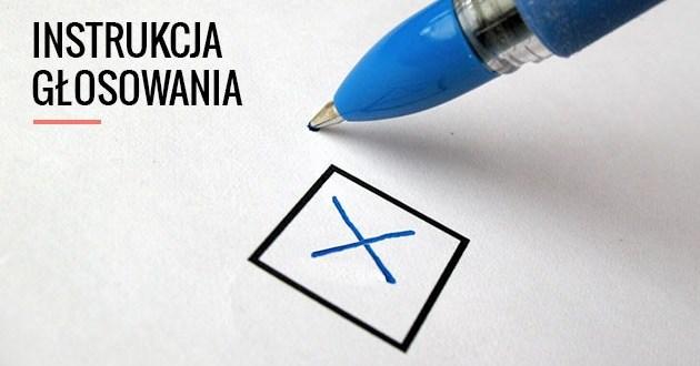 obrazek wybory