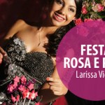 Festa Rosa e Pink | Larissa Vieira