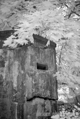 This bunker looked like he had a grumpy expression on his face. (Camera: Canon Rebel XT converted to Infrared)