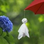 【梅雨】梅雨入りはもう怖くない!梅雨を快適に過ごすにはどうしたらいいの!?