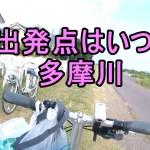 大田区からの多摩川の旅!二ホントカゲ捕獲とセミ捕りの極意!そこはいつも何かの始まり