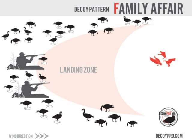 duck and goose combo decoy spread