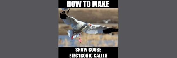 How to make a snow goose electronic caller
