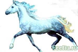novyi-god
