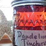 Homemade Medicinal Dandelion Tincture NO text