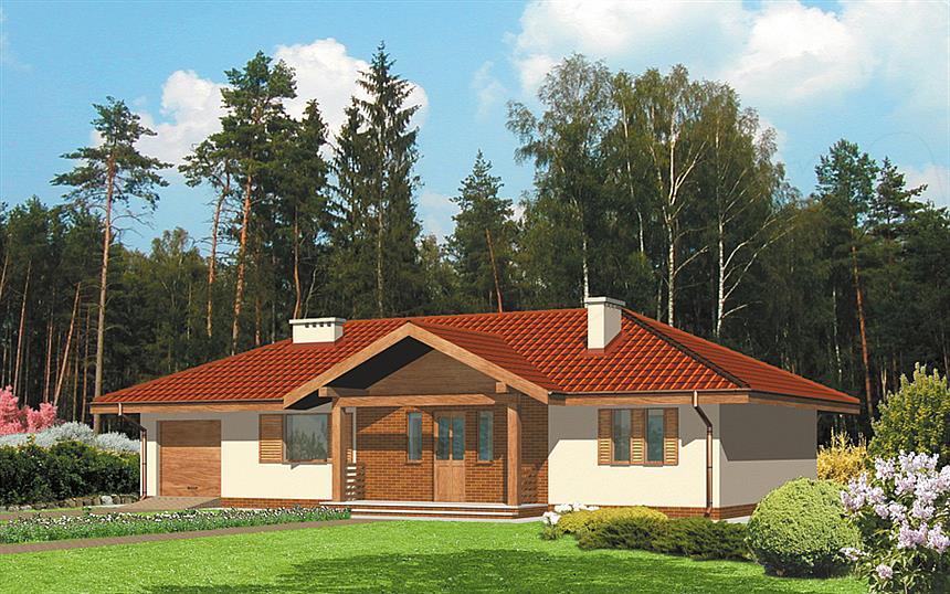 Dom dla kilkuosobowej rodziny – projekt