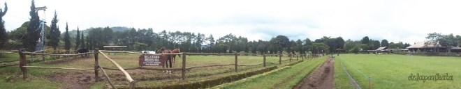 de ranch 4