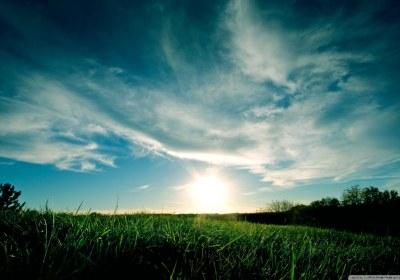 sunny_day_summer-wallpaper-1280×800