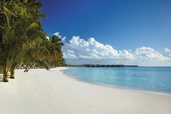 beach-654