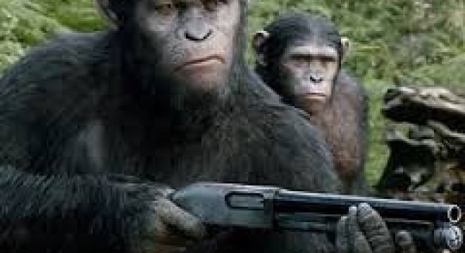 Pro-tip:  monkey with shotgun is an automatic win in Rock-Paper-Scissors.