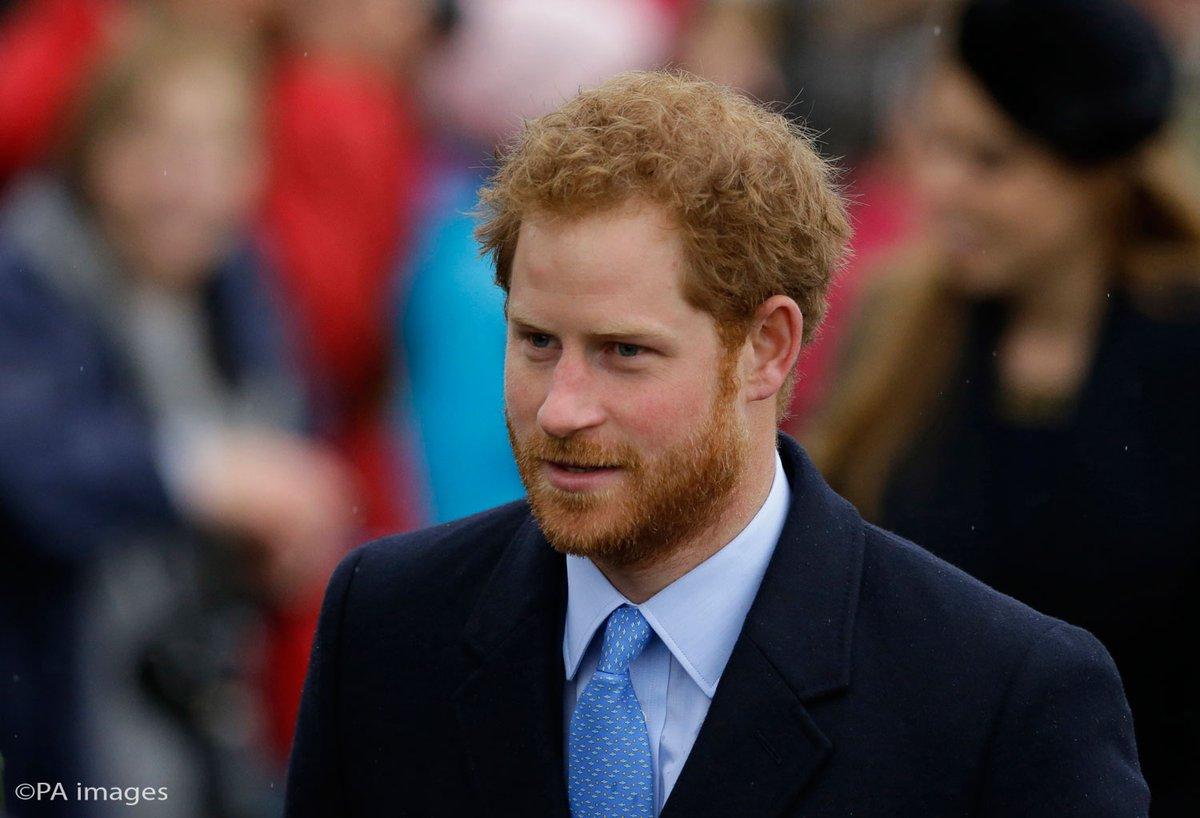 Prince Harry Planning Caribbean Visit