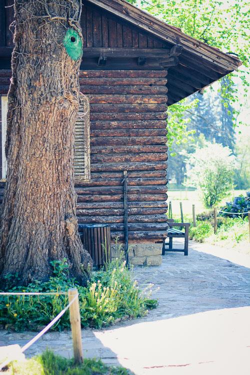 Barn House Purely Me by Denina Martin