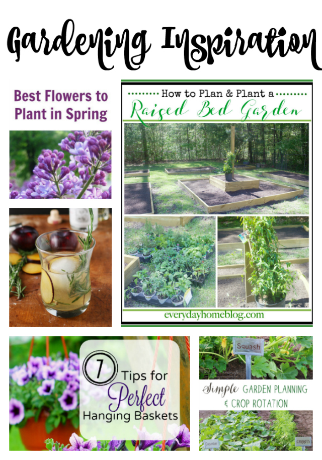 gardening inspiration 640