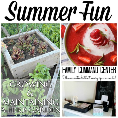 Summer Fun at Sunday Features {132}