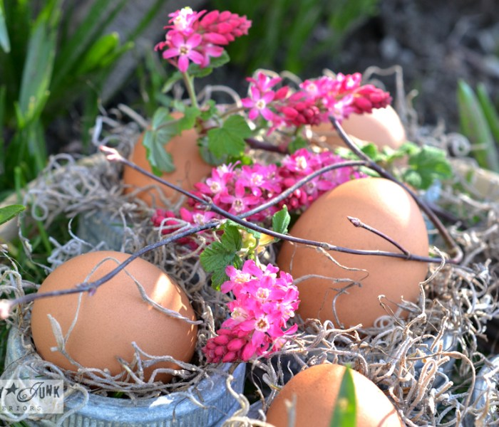 Junky_Easter_Egg_Decorating-0577
