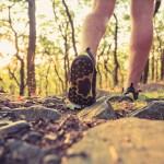Walking Best Exercise DeniseSanger.com