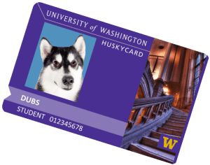 Husky Card for Dubs