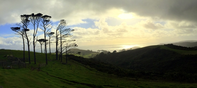 Derek Loudermilk Art of Adventure New Zealand North Island Anawhata