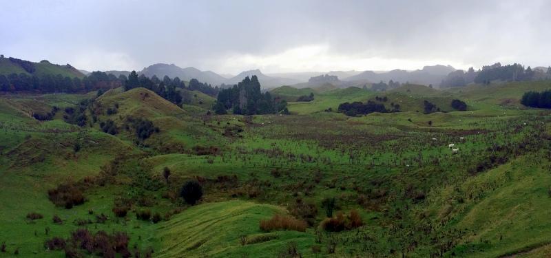 Art of Adventure Derek Loudermilk New Zealand North Island Rolling HIlls