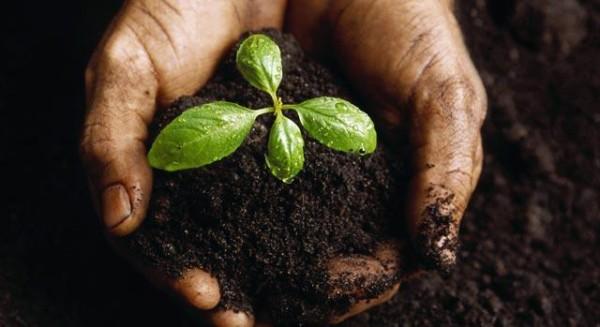 Fórum Mundial debaterá acesso à terra e aos recursos naturais