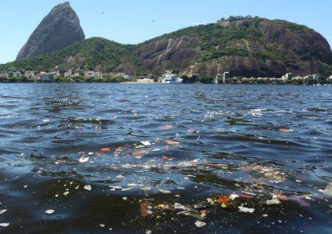 Custos econômicos da poluição e degradação ambiental no Brasil