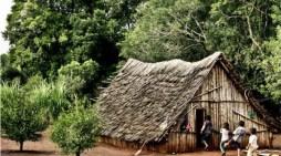 Por uma permacultura indígena