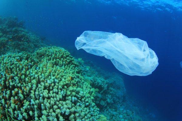 Desperdício e destruição na era dos plásticos