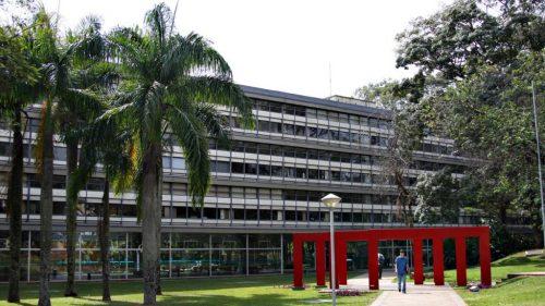 IELA na USP/São Carlos