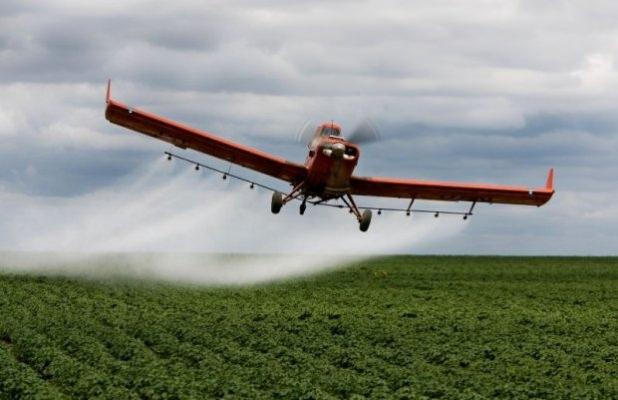 Consumo de agrotóxicos aumenta cinco vezes no Distrito Federal