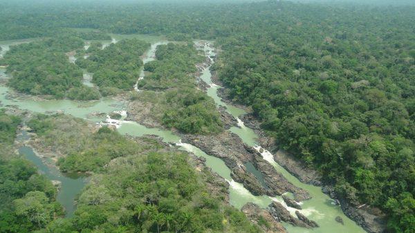 MPF pede que justiça impeça redução da Floresta Nacional do Jamanxim para menos da metade da área atual