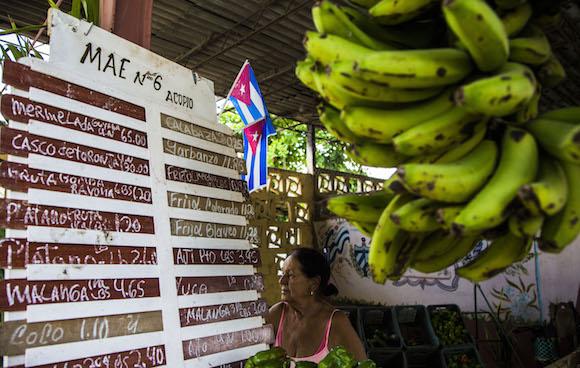 """Raj Patel: """"Modelo agroecológico cubano poderia salvar o mundo"""""""