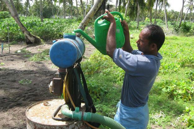 Relatores de direitos humanos da ONU querem o fim do uso de agrotóxicos na agricultura