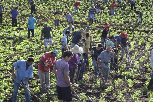 A contribuição dos assentamentos rurais para uma região em conflito