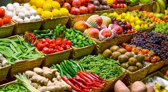 Sistema agroalimentar remove o sentido original da agricultura