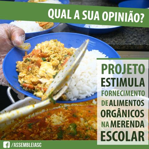 organicos-merenda