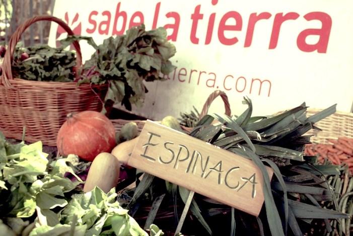 Sabe La Tierra: O maior mercado Argentino de consumo responsável