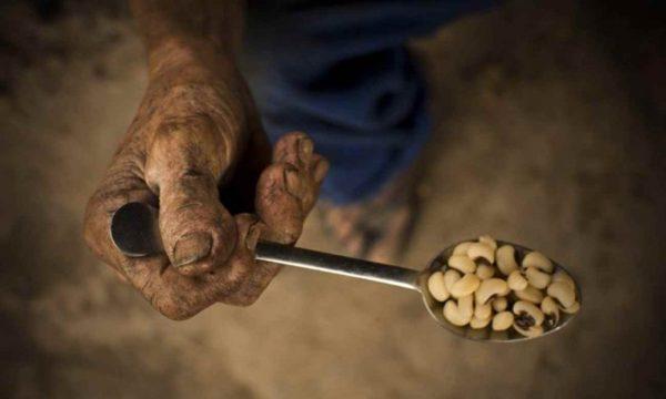 Aumenta a fome na América Latina e no Caribe: 42,5 milhões de pessoas estão subnutridas, segundo a FAO