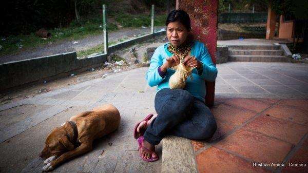 Ministério Público de Santa Catarina determina demarcação e proteção da terra indígena Cambirela