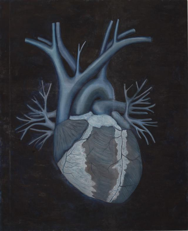 Coração Entranhas Foto Div