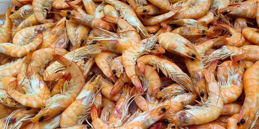 How do You like your Shrimps? With Antibiotics, Chlorine, or Diesel?