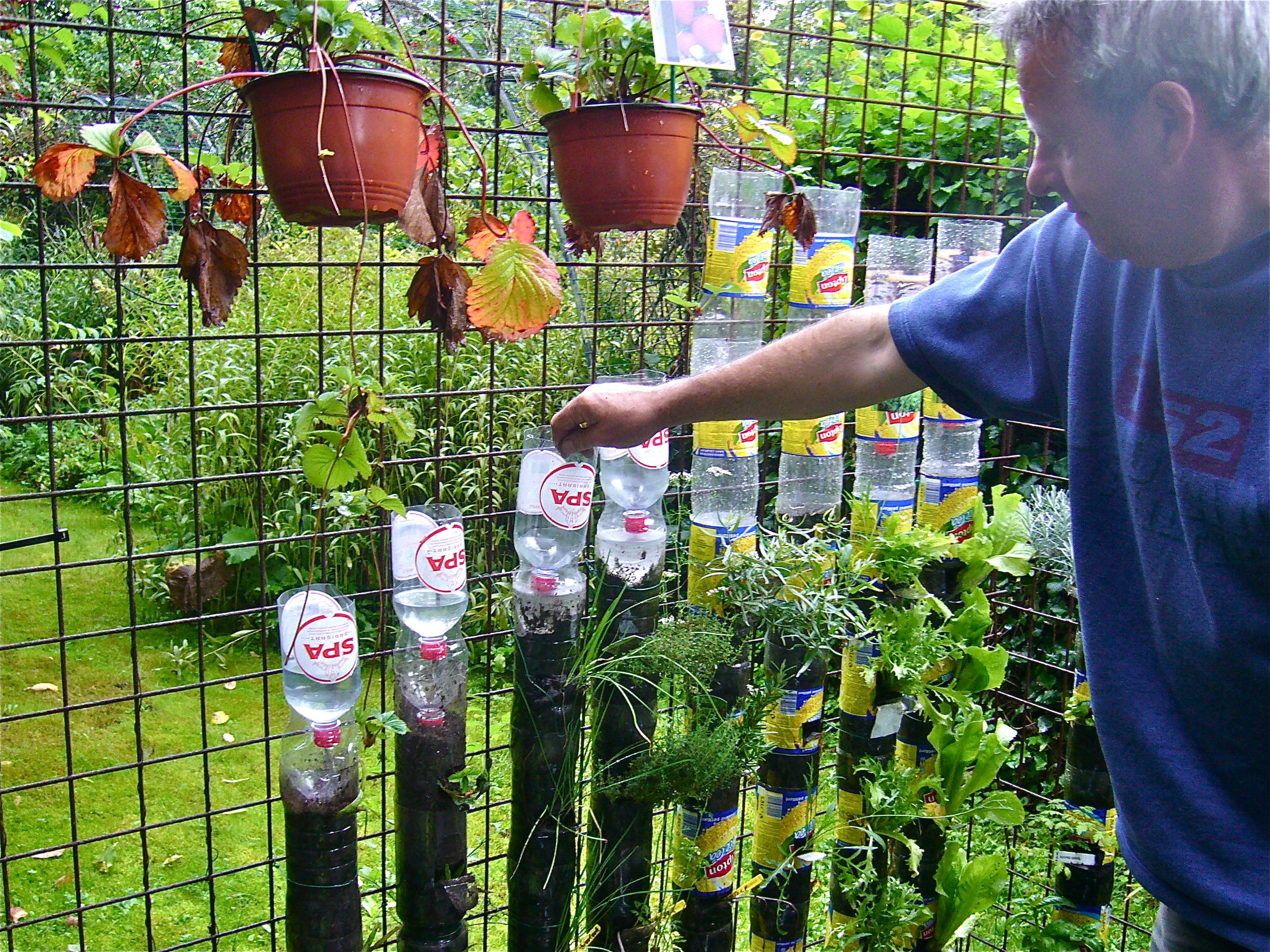 Showy Building A Bottle Tower How To Build A Bottle Tower Youtube Container Gardening Vegetables Youtube Container Gardening Container Gardening Combating Malnutrition garden You Tube Container Gardening