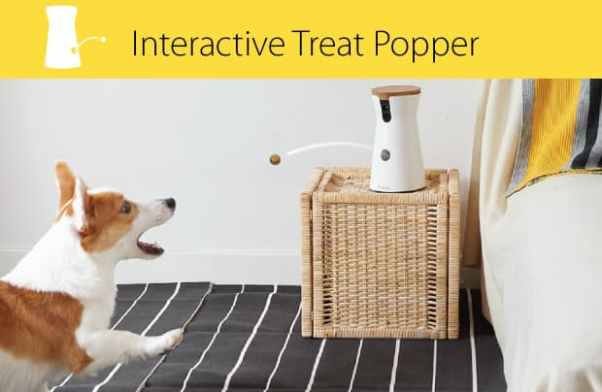furbo-dog-treats-9.png