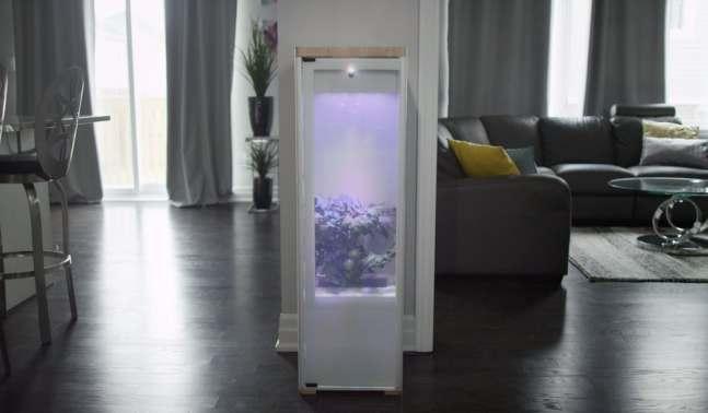 grobo-smart-indoor-garden-4
