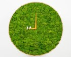 clock by noktuku brings nature home…