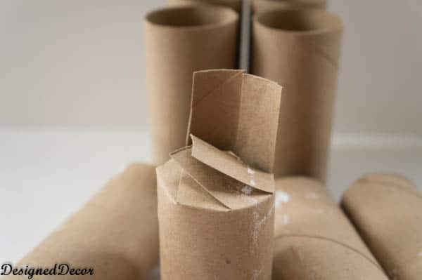 Toilet Paper Seed Starters-4