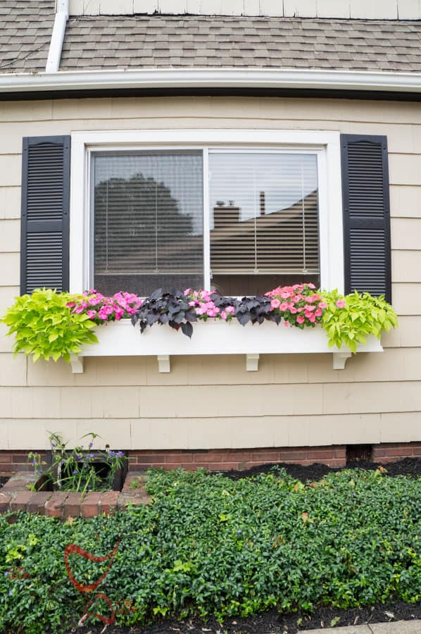 Window Boxes- Flower Boxes- How to add curb appeal-10