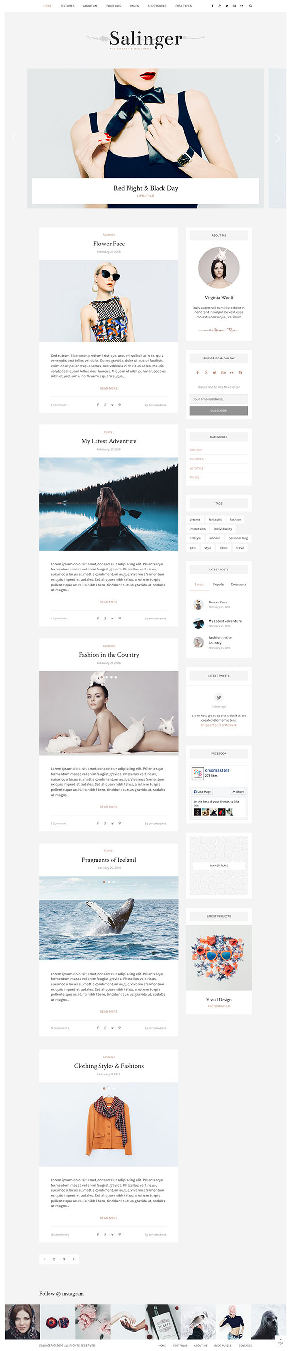 13 Salinger - Personal Blog & Portfolio WordPress Theme