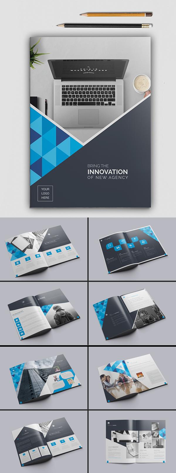 006 brochure design